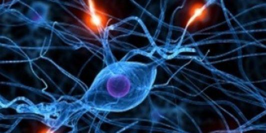 Les électrochocs, la méthode pour être bon en maths ?
