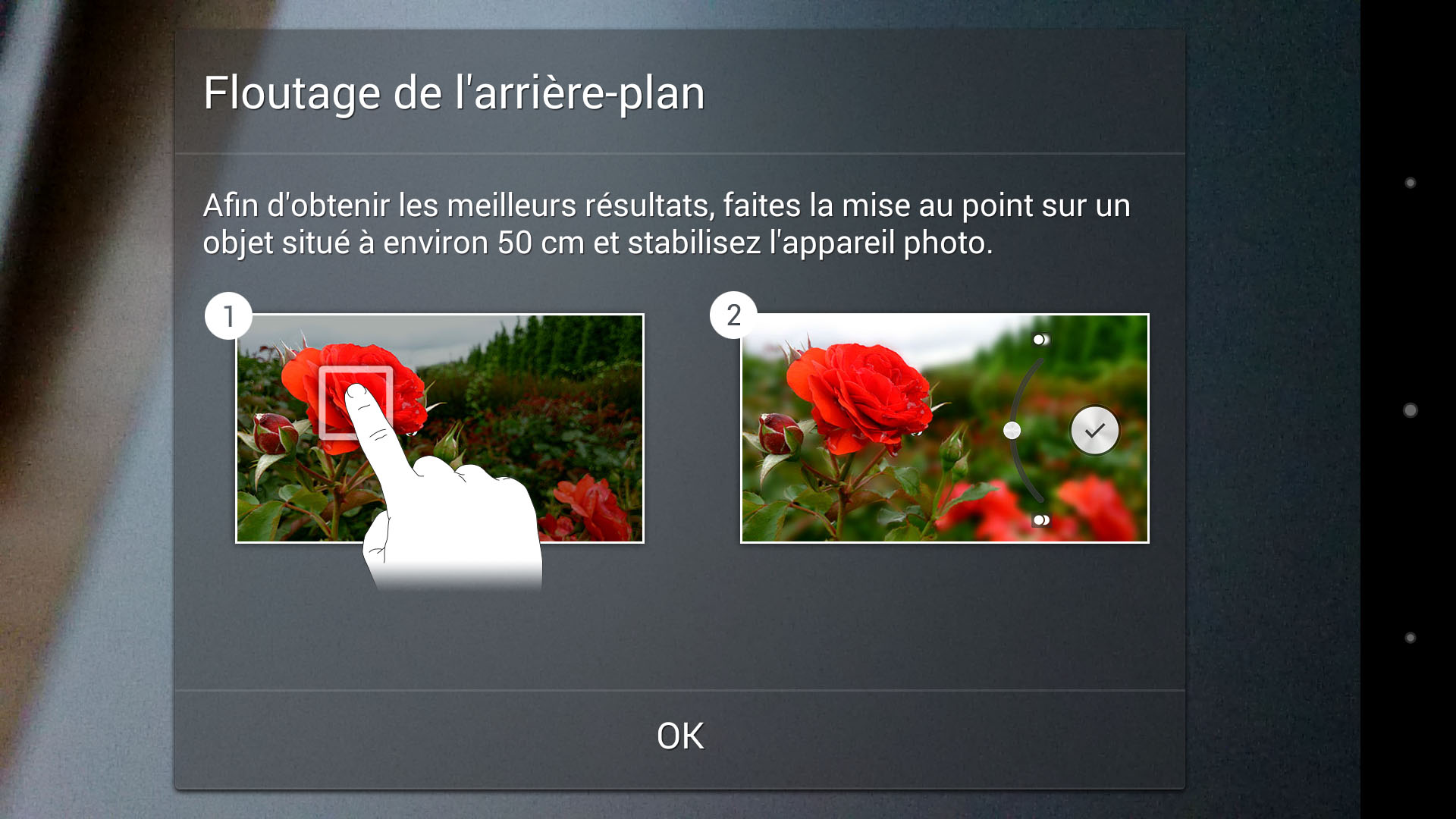 L'application Floutage de l'arrière-plan pour l'appareil photo des smartphones de la série Xperia Z.